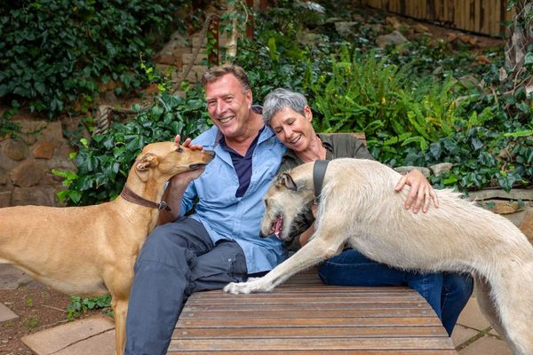 Chris and Niki Neumann with greyhound dogs at Lezard Bleu Guest House, Cape Town